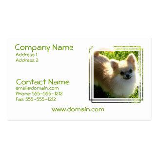 Tarjeta de visita de los perritos de Pomeranian