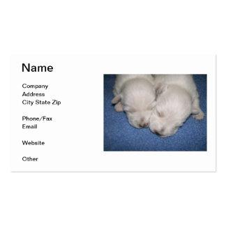 Tarjeta de visita de los perritos de Terrier blanc