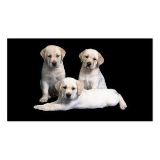 Tarjeta de visita de los perritos del labrador ret
