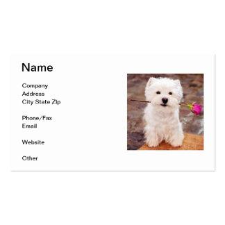 Tarjeta de visita de Terrier blanco de montaña del