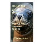 Tarjeta de visita de Wet Seal