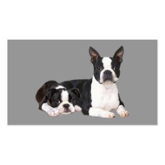 Tarjeta de visita del amante de Boston Terrier