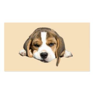 Tarjeta de visita del amante del beagle