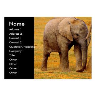 Tarjeta de visita del becerro del elefante