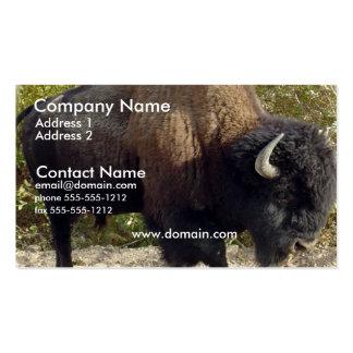 Tarjeta de visita del búfalo