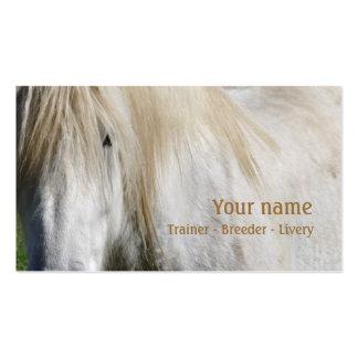 Tarjeta de visita del caballo blanco