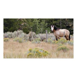 Tarjeta de visita del caballo de la gama
