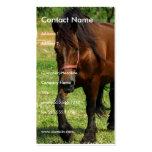 Tarjeta de visita del caballo de proyecto