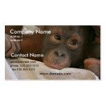 Tarjeta de visita del chimpancé del bebé