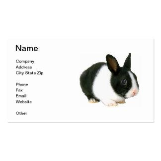 Tarjeta de visita del conejo de conejito del enano