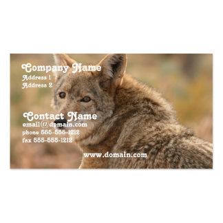 Tarjeta de visita del coyote