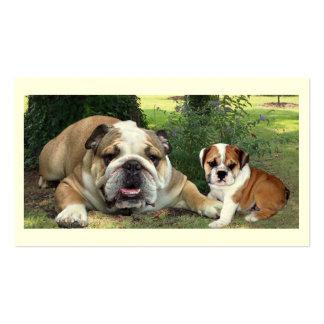 Tarjeta de visita del criador de perros de Bull