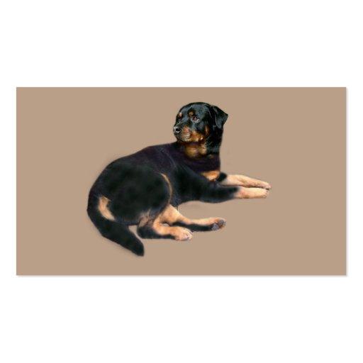 Tarjeta de visita del criador de Rottweiler