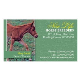 Tarjeta de visita del criador del caballo