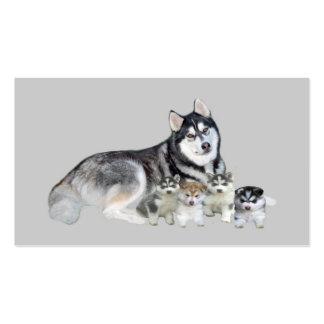 Tarjeta de visita del criador del husky siberiano