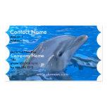 Tarjeta de visita del delfín