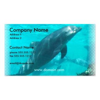 Tarjeta de visita del delfín de la natación