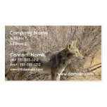 Tarjeta de visita del diseño del coyote