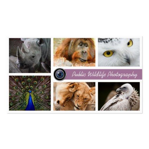Tarjeta de visita del fotógrafo de la fauna