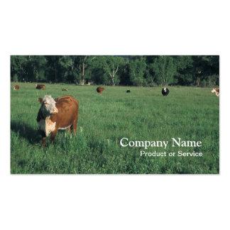 Tarjeta de visita del ganado de Hereford