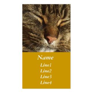 Tarjeta de visita del gato del gatito