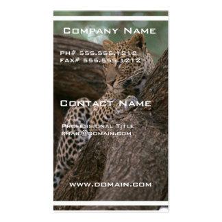 Tarjeta de visita del hábitat del leopardo