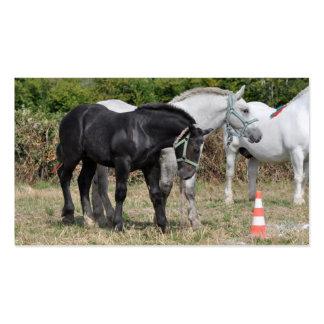 Tarjeta de visita del instructor de caballo