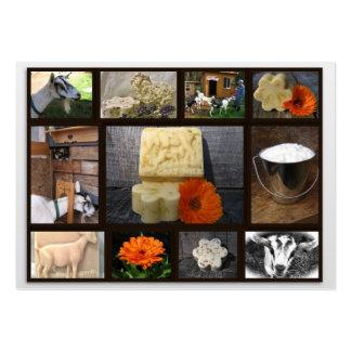 Tarjeta de visita del jabón de la cabra de la medi