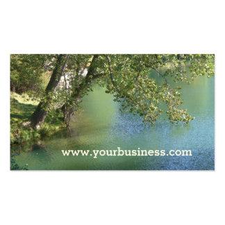 Tarjeta de visita del lago trees de la naturaleza