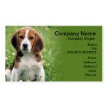 Tarjeta de visita del mascota del beagle que se si