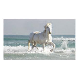 Tarjeta de visita del océano del caballo