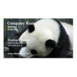 Tarjeta de visita del oso de panda