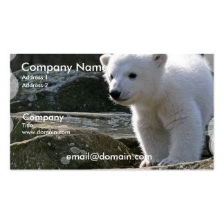 Tarjeta de visita del oso polar del bebé