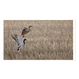 Tarjeta de visita del pato