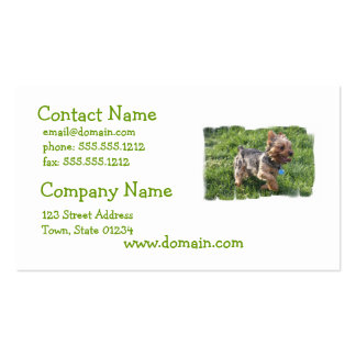 Tarjeta de visita del perro de York Terrier
