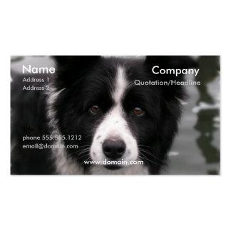 Tarjeta de visita del perro del border collie