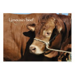 Tarjeta de visita del toro de Lemosín