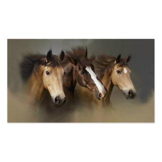 Tarjeta de visita del trío del caballo salvaje