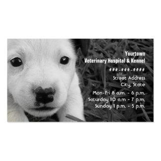 Tarjeta de visita del veterinario y de la perrera