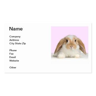 Tarjeta de visita espigada del conejo del Lop