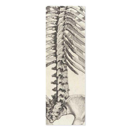 Tarjeta de visita espinal