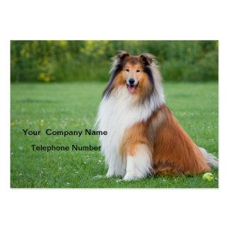 Tarjeta de visita hermosa de la foto del perro ásp