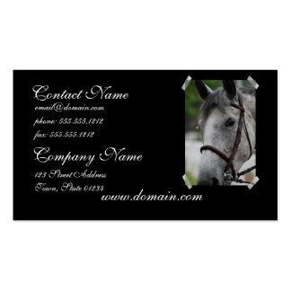 Tarjeta de visita linda del caballo del Appaloosa