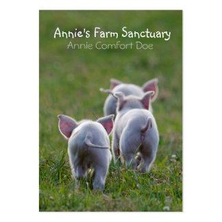 Tarjeta de visita linda del santuario de la granja