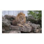 tarjeta de visita lion1
