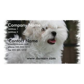 Tarjeta de visita maltesa blanca del perro de perr