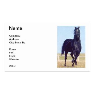 Tarjeta de visita negra del caballo