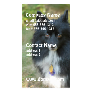 Tarjeta de visita negra del perro de Pomeranian
