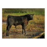 Tarjeta de visita rechoncha de la granja de Bull o