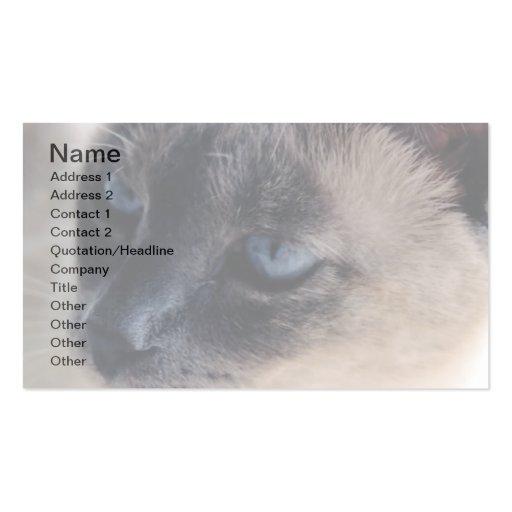 Tarjeta de visita reservada del gato siamés